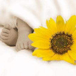 phinephoto-berlin-portrait-baby-fuesschen-sonnenblume
